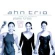 "Ahn Trio Klaviertrio e-moll op.90 ""Dumky-Trio"": I. Lento maestoso - Allegro"