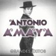 Antonio Amaya Grandes Exitos
