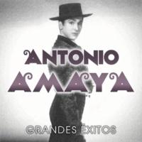 Antonio Amaya La Escalera