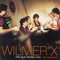Wilmer X Sjuk av att se dig