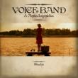 Voice Band & Anita Lipnicka Stachu