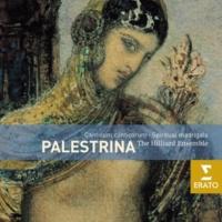Hilliard Ensemble/Paul Hillier Il primo libro de madrigali: Stanze sopra la Vergine, 1. Vergine bella