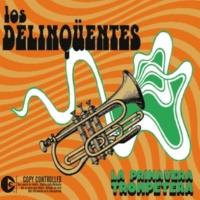 Los Delinqüentes La primavera trompetera (Radio Edit)