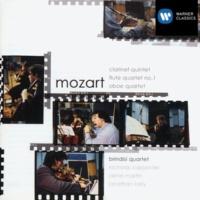 Brindisi Quartet I - Allegro