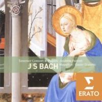Emily Van Evera/Evelyn Tubb/Caroline Trevor/Howard Crook/Simon Grant/Taverner Consort/Taverner Players/Andrew Parrott Magnificat in D BWV243: Suscepit Israel