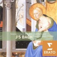 Emily Van Evera/Caroline Trevor/Charles Daniels/David Thomas/Andrew Parrott Christ lag in Todesbanden BWV 4: Versus 2 - Duet: Den Tod niemand zwingen kahn (soprano/alto)