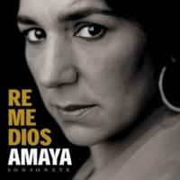 Remedios Amaya El Rincón De Luis
