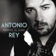 Antonio Rey Camino Al Alma