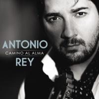 Antonio Rey Alma