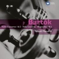 Yehudi Menuhin 44 Duos for 2 Violins, Sz. 98: No. 28, Sorrow (Lento poco rubato)