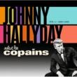 ジョニー・アリディ Salut Les Copains 1960 - 1965