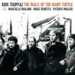 Erik Truffaz The Walk Of The Giant Turtle