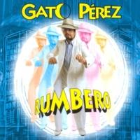 Gato Perez Se Fuerza La Máquina
