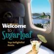 ヴァリアス・アーティスト Welcome To The SUGAR LOAF - Top Delightful Duets