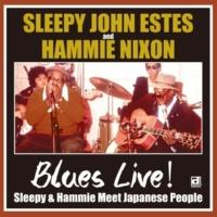 "SLEEPY JOHN ESTES & HAMMIE NIXON ""I'll Be Glad When You're Dead, You Rascal You"""