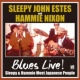 "SLEEPY JOHN ESTES & HAMMIE NIXON ""Holy Spirit, Don't You Leave Me"""