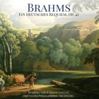 Herbert von Karajan, The Vienna Philharmonic Orchestra & The Vienna Singverein Ein deutsches Requiem, Op. 45: IV. Wie lieblich sind deine Wohnungen