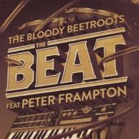 The Bloody Beetroots ザ・ビート feat. ピーター・フランプトン (Bottai Remix)