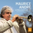 Maurice André Trumpet Concerto in D Minor: I. Largo