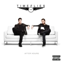 Timeflies All We Got Is Time