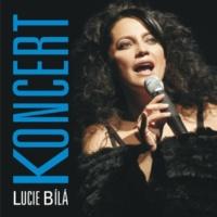 Lucie Bílá Pisen samotarky (Live)