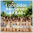 AKB48 ラブラドール・レトリバー<劇場盤>
