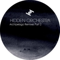 Hidden Orchestra Flight (Mungo's Hi Fi Remix)