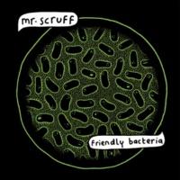 Mr. Scruff He Don't  (feat. Robert Owens)