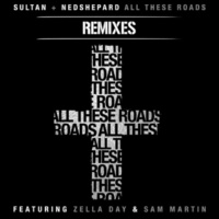 Sultan + Ned Shepard All These Roads (feat. Zella Day and Sam Martin) (Bees Knees & Virtu Remix)