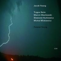 ヤコブ・ヤング/Trygve Seim/マルチン・ボシレフスキ/スワヴォミル・クルキエヴィッツ/ミカル・ミシェキヴィッチ Sofia's Dance