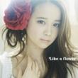 塩ノ谷 早耶香 Like a flower<Type-A>