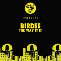 Birdee The Way It Is (Louis La Roche Remix)