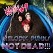 NAMBA69 MELODIC PUNKS NOT DEAD!!!