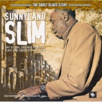 Sunnyland Slim Woman I Ain't Gonna Drink No More Whiskey