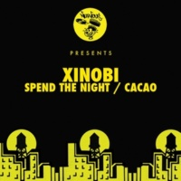 Xinobi Spend The Night (Original Mix)