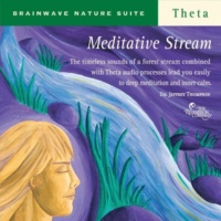 Dr. Jeffrey Thompson Meditative Stream