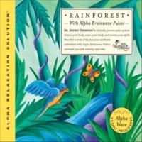 Dr. Jeffrey Thompson Rainforest