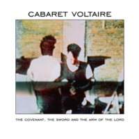 Cabaret Voltaire Hells Home