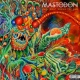 Mastodon Once More 'Round The Sun