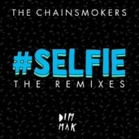 ザ・チェインスモーカーズ #SELFIE [Botnek Remix]