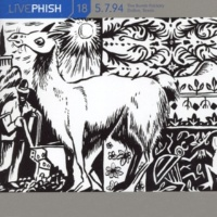 Phish Suzy Greenberg