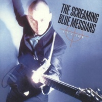 The Screaming Blue Messiahs Clear View