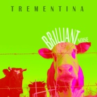 TREMENTINA Grounded