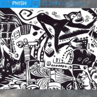 Phish Silent In The Morning