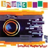 Brainiac Flypaper