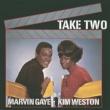 Marvin Gaye Take Two