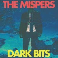 The Mispers Dark Bits