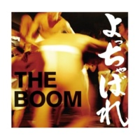 THE BOOM 情ションガイネ