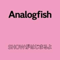 Analogfish SHOWがはじまるよ