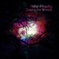 Richard Hawley Kindly Rain